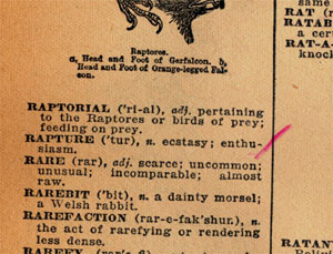 Someone's old dictionary: Rapture