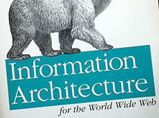 'Information Architecture for the World Wide Web'