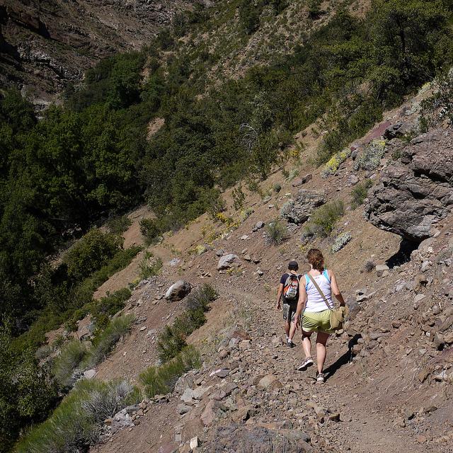 Chile trip, 2010