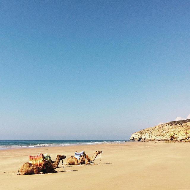 Spain & Morocco trip, 2015